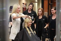 Hair Stylists Institute