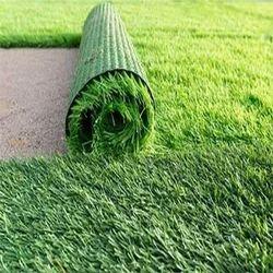 Grass For Exterior