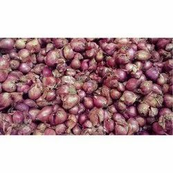 Onion in Dindigul - Latest Price & Mandi Rates from Dealers in Dindigul