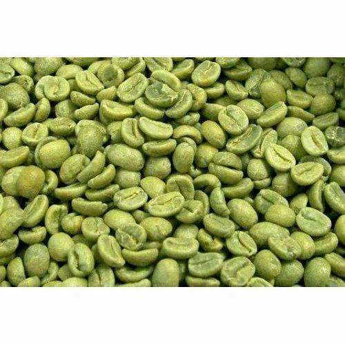 Green Coffee Bean Organic Pack Size 1 20kg Rs 1000 Kilogram
