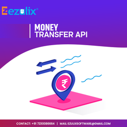 Money Transfer Services, Instant Money Transfer Service in Delhi