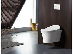 Intelligent Wall-Hung Toilet