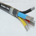 4Cx10 sq mm Aluminium Unarmoured Cable