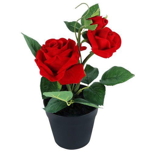 Wonderland Red Rose Pot