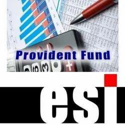 ESI Returns Services, India