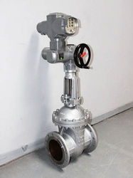 Cryogenic long stem Globe valve