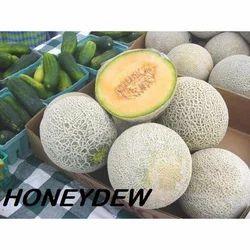 Fresh Honeydew