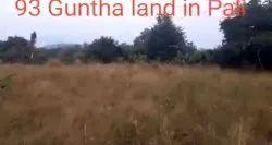 Resale Buy land in pali, Size/ Area: 108 Guntha