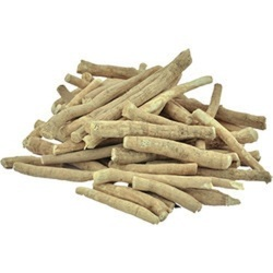 Ashwagandha Roots - Withania Somnifera - Amukkuram - Indian Ginseng