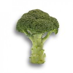 Tahoe RZ Broccoli Seeds