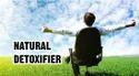 Ayurvedic Detox Support Supplement - Detoxhills 60 Tablets