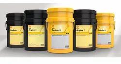 Shell Argina Engine Oil