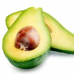 Avocado - Avocado Fruit Wholesaler & Wholesale Dealers in India
