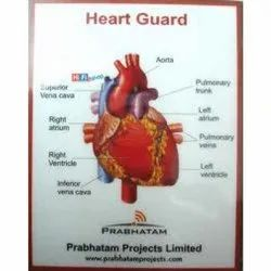 Anti Radiation Heart Guard