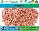 Java Peanut, Packaging Type: Vacuum Bag