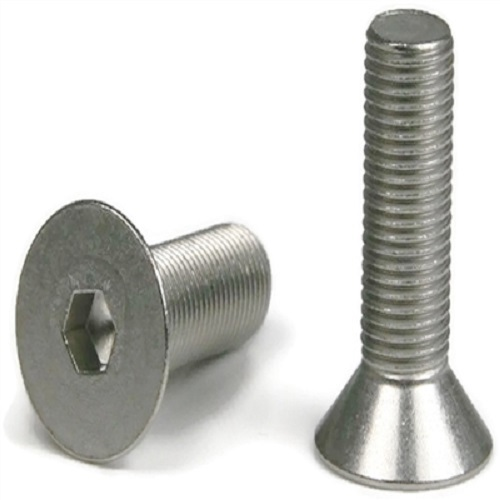 Amco Stainless Steel Screw