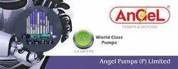 Angel Pumps