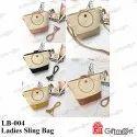 Ladies Slings Bag Or Ladies Handbag