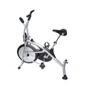 Platinum Upright Bike