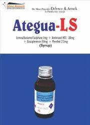 Levosalbutamol sulphate 1mg   Ambroxol Hcl 30mg   Guaiphenesin 50mg   Menthol 2.5mg
