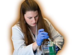 Diploma in Pharmacy Courses