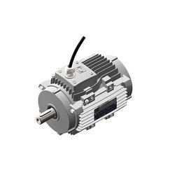 High Temperature Motors