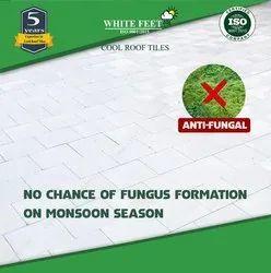 White Clay Roof Tiles White Feet