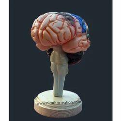 Nirmith Creation Fiber Brain Sculpture