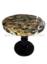 Horn Inlay Beehive Modern Coffee Table