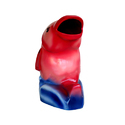 Fish Shaped Dustbin- In Pink & Blue Colour