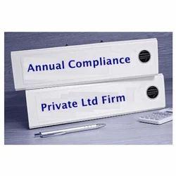 Companies Annual Filing