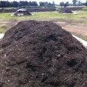 Organic City Compost