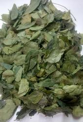 Dried Curry Leaves, PP Bag, Packaging Size: 5-20 kg