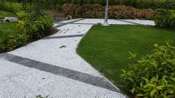 Pathway Garden Pebbles Stone, For Landscaping And Pavement