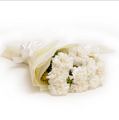 12 white carnations carnations flowers bookmyflowers new delhi 12 white carnations mightylinksfo