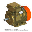 75 HP 3PH 1440 RPM Foot Mounted Motor