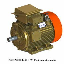 75 HP 3PH 1440 RPM Foot Mounted Motor