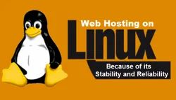 Free Linux Web Hosting Service, Pan India