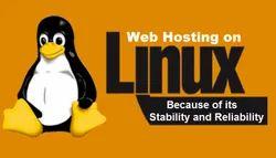 Free Linux Web Hosting Service, Pan India