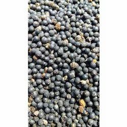 Racemosus Asparagus Seeds, Packaging: 50 kg