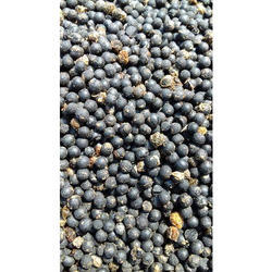 Asparagus Racemosus Seeds, Packaging Type: Bag, Pack Size: 50 Kg