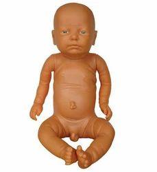 Male Newborn Baby Model