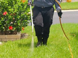 Residential Garden Pest Control