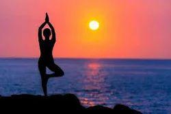 Yoga Classes Service