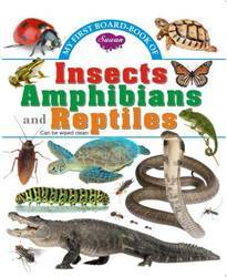 My First Board Book Insects Ambhibians Reptiles