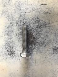 SS Steel Nut