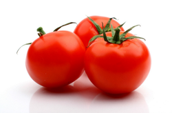 Hybrid Tomato RPT F1