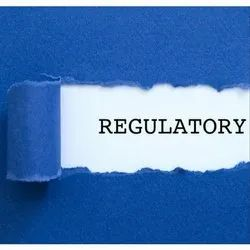Consulting Firm Offline Regulatory Services