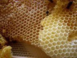 Honey Comb Treatment