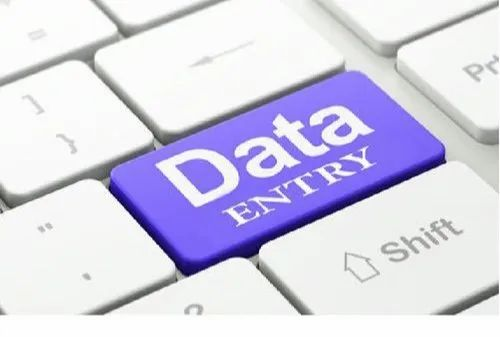 24 Hours MCA Offline Data Entry Project, Home